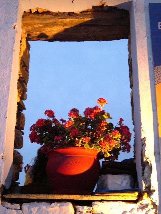 Window without home