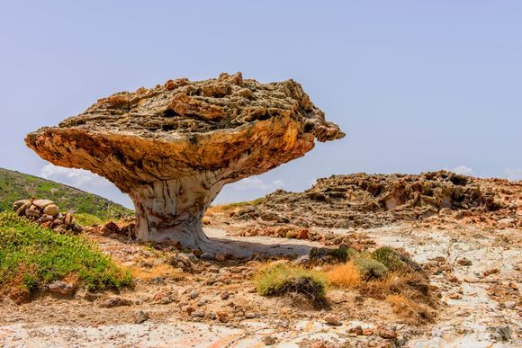 No, this is not a giant mushroom. It is a rock that has been eroded by the wind! It is calledSkiadi and it is located on Kimolos island. More about Kimolos here:https://www.greeka.com/cyclades/kimolos/