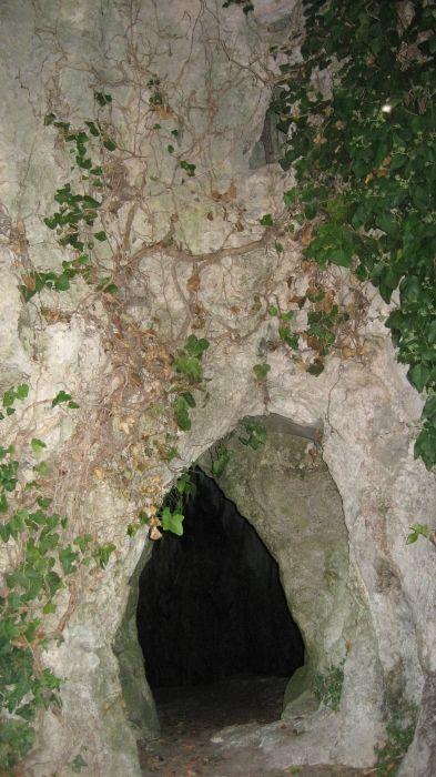 Drakotrypa enter