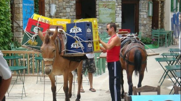 Donkey taking supplies to the Old Village, Alonissos
