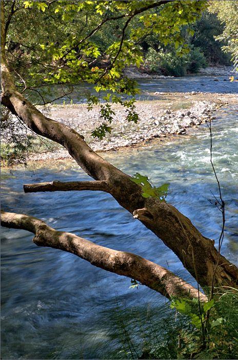 Detail from Acheron river, Gliki