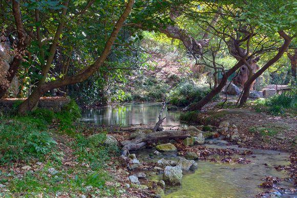 Springs of Acheron