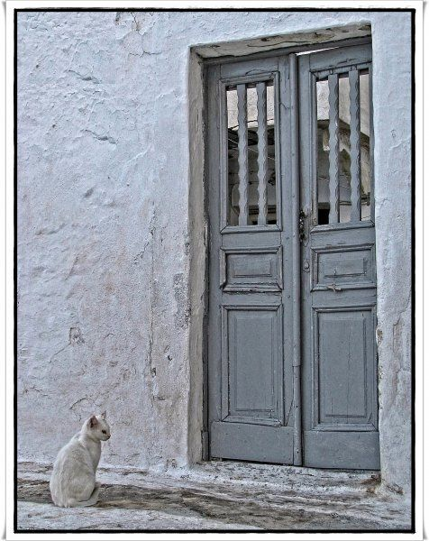 17-09-2013  Leros: Let me in please !