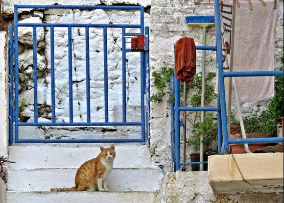 12-09-2019 Ikaria: Evdilos ........Private security ......    ;-)