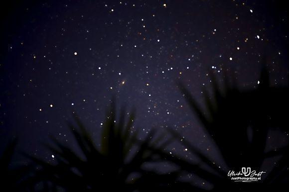 morning sky full of stars