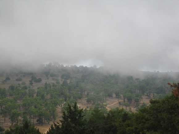 close to Anopoli, misty forest a prior to rain