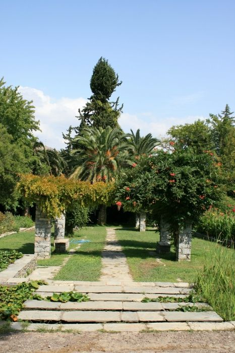 Nice:  The Diomidis Botanical Garden-beautiful place in which you will find peace and relax eyes and ask yourself are you in big crowdy Athens? Do not miss to visit this place if you like to escape from trafic and jump to be in touch with nature....