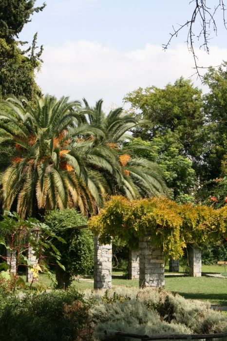 Greenery:  The Diomidis Botanical Garden-beautiful place in which you will find peace and relax eyes and ask yourself are you in big crowdy Athens? Do not miss to visit this place if you like to escape from trafic and jump to be in touch with nature....