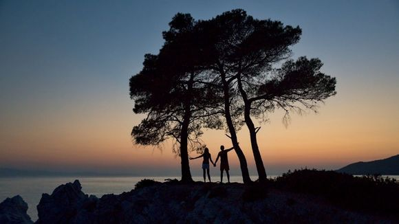 Amarantos cape, Three trees - Love is love