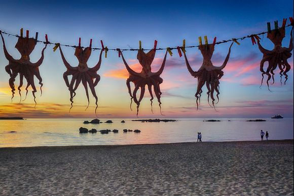Under the Cretan Sky - Octopuses drying outside of a seafood taverna and visitors strolling on the sandy Nea Chora beach.