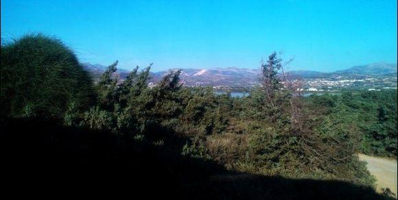 natural landscape  at the salt lake