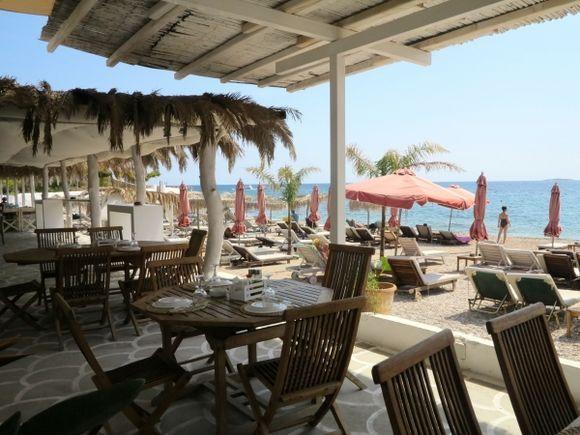 Beach Club Paradise