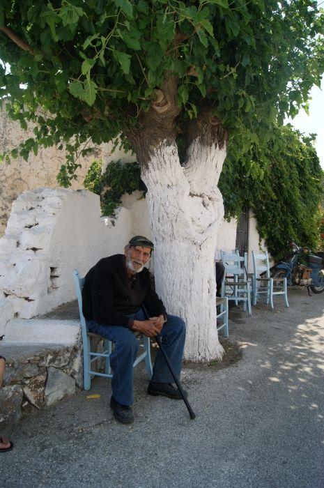 Michali and the Imouria tree Mariou, Crete