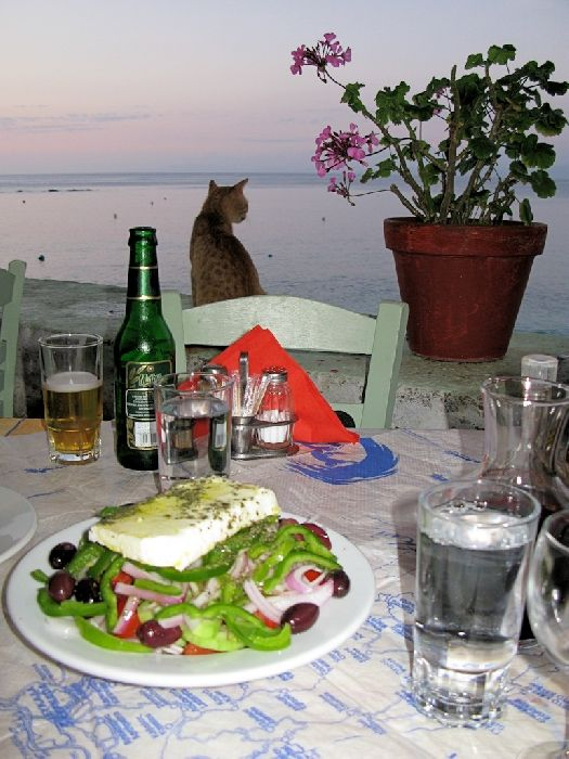 Greek salad at the fish taverna overlooking the sea at Aghios Nikitas. The cats became more interested when the sea bream arrived!