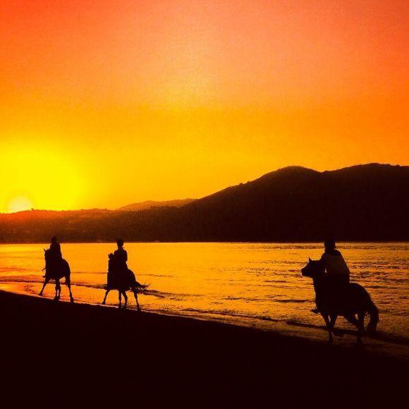 Horseriding in the beautiful sunset in georgioupolis, crete.