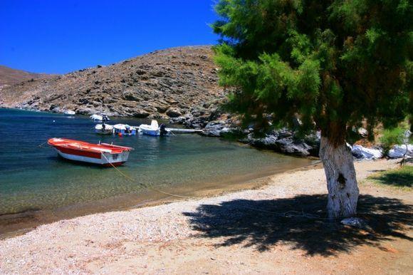 Agia Irini Beach with tree and boat
