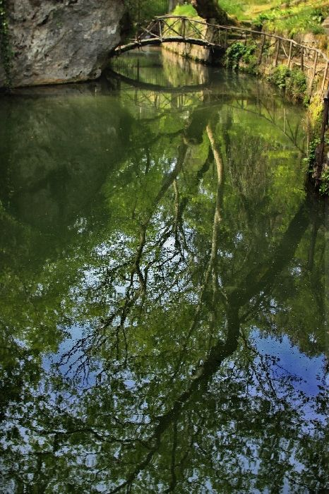 Wooden bridge and tree reflected in a stream, Rodini Park
