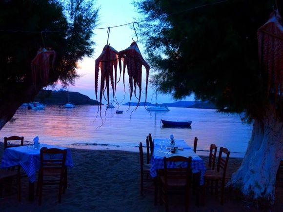 Beach taverna with hanging octopus