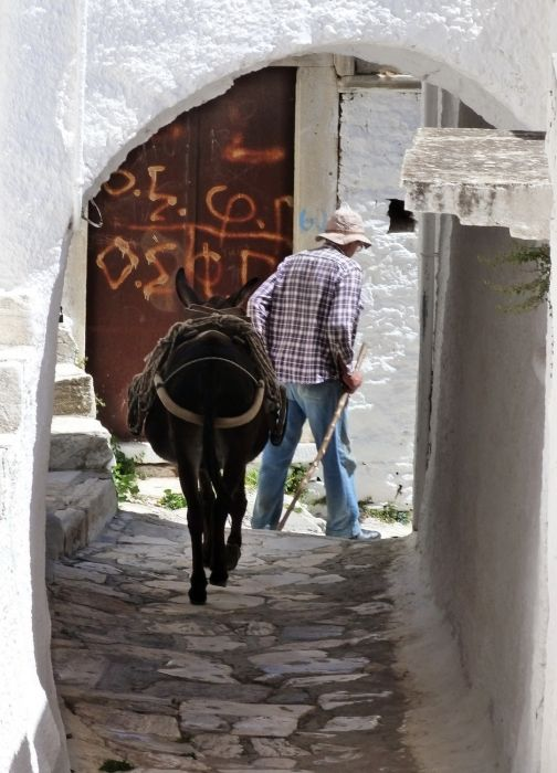 Man and donkey in Apeiranthos alley