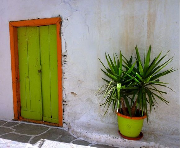 Facade with green and orange pot and wooden door
