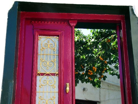 Traditional red door opening on an orange tree