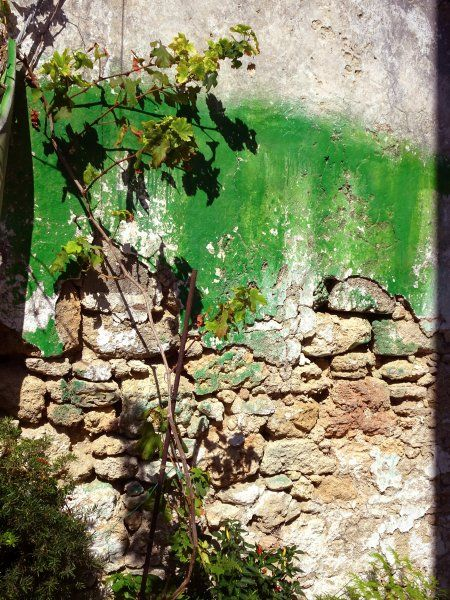 Decayed green wall