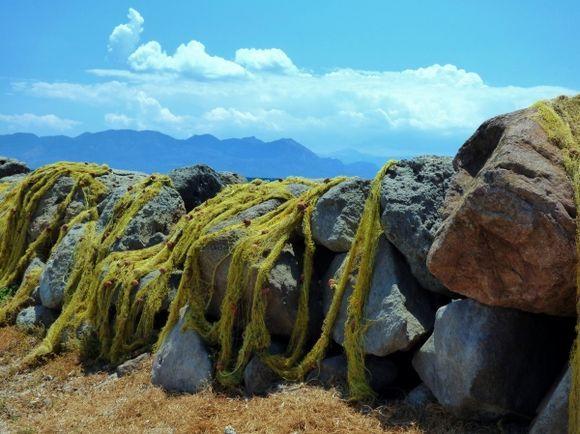 Scenery with fishing nets. Aegina