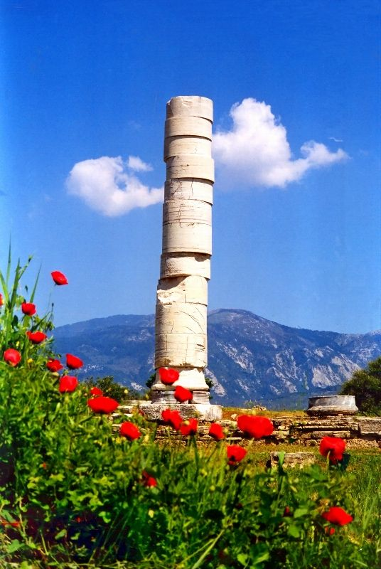 Single column remaining from the ancient temple of Hera, Heraion