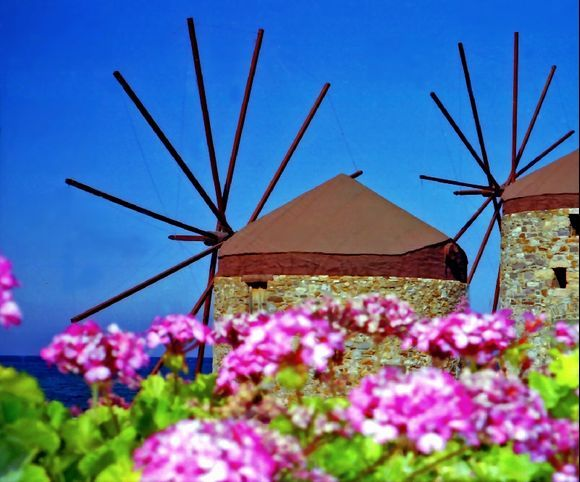 Closeup view of stone windmills and pink geranium on the edge of water
