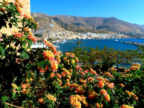 General view of Pothia bay with blossoms