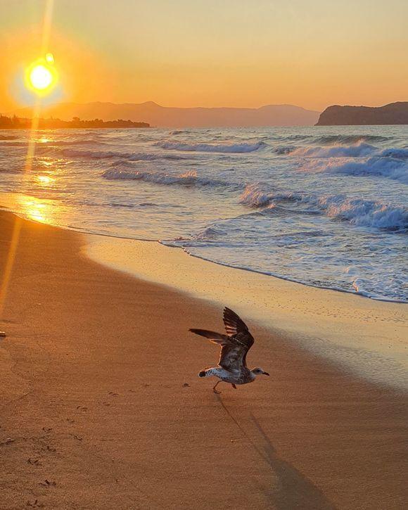 Sunset.....segul