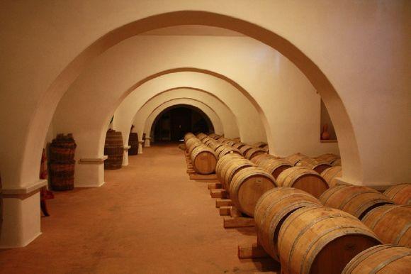Cellar of Moraitis Winery