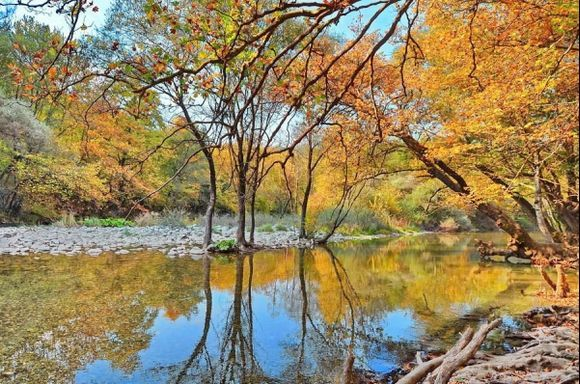 Autumn colours in Voidomatis river