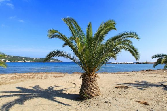 The beach of Agia Marina in late October (2)