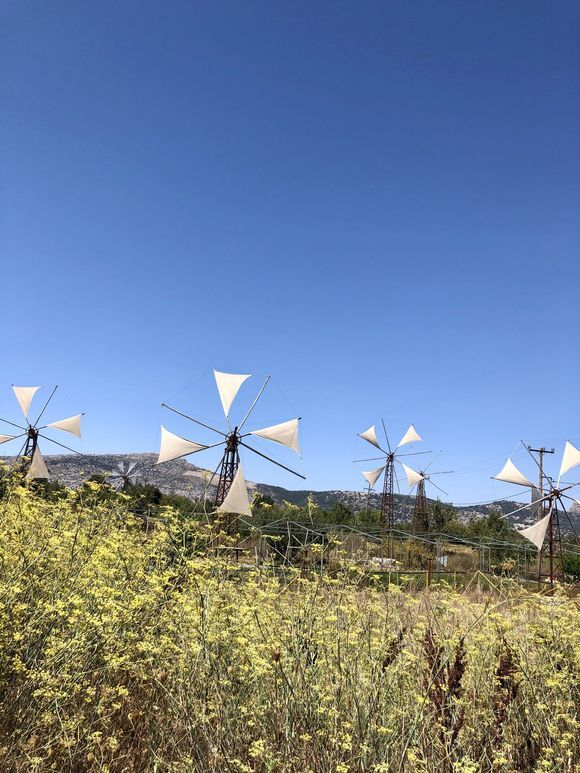 Windmills Lasithi. Kriti