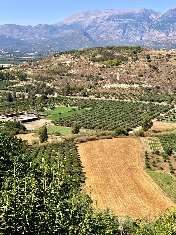 the fields seen from the viewpoint of the Ancient city of Phaestos