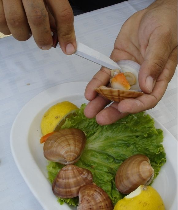 fresh mussels at Aristos