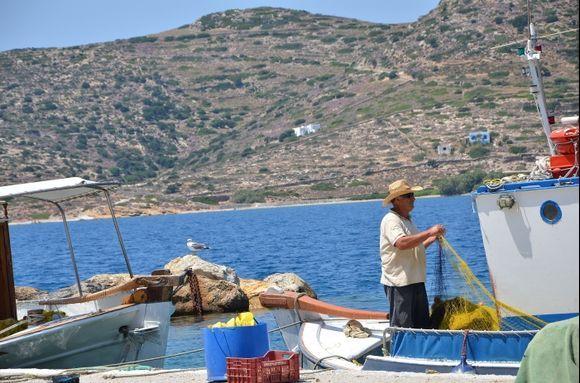 Katapola harbor life