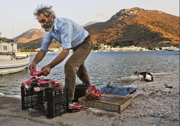 Fisherman's Evening
