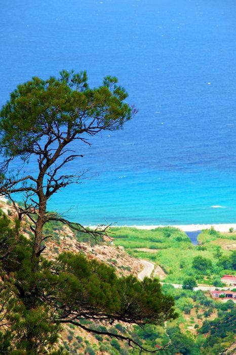 green Ikaria