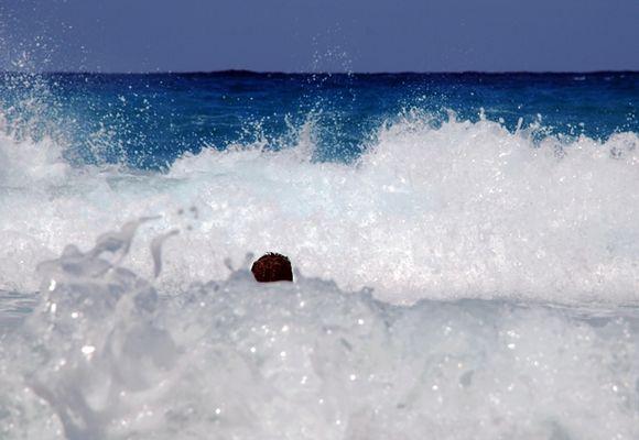 big waves #2