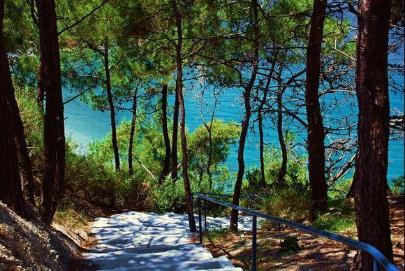 green forest for Tsamadou beach ...