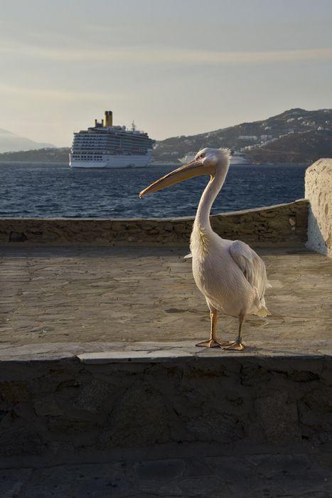Mykonos Landmark