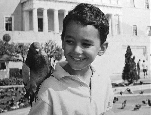 syntagma pigeon