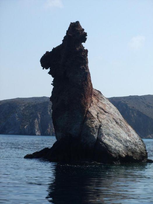 Rabbit Rock - Vani