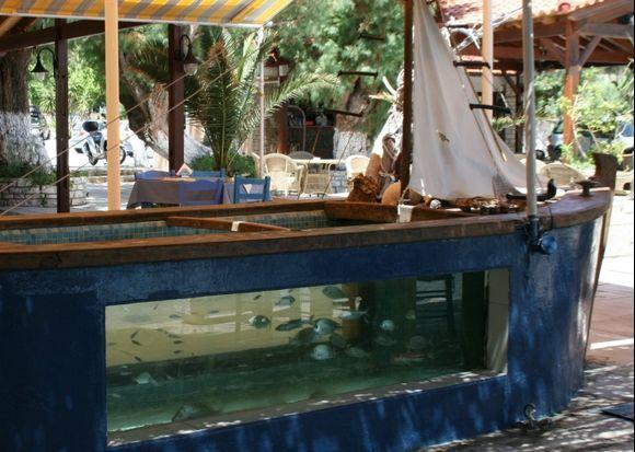 Fishtank at Psidonio Taverna