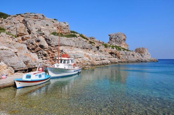 Palatia Bay, Saria