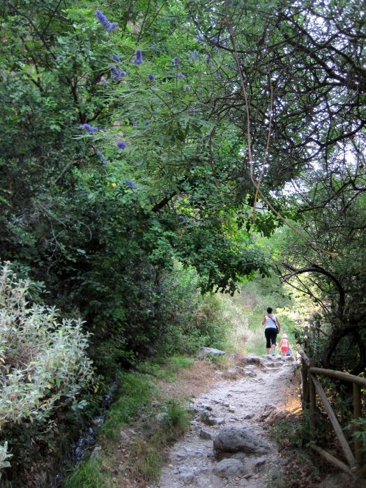 Lefkada, waterfalls of Nidri