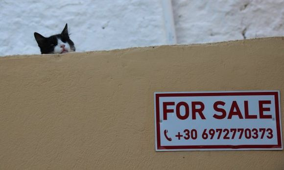 The house is for sale, not the cat !