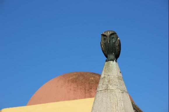 The owl from the center of the town.